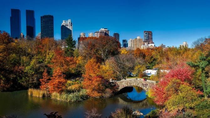 Fall in New York: 6 of the Best Things to See and Do